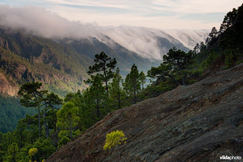 Caldera de Taburiente Nationaal Park